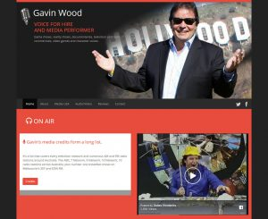 Gavin Wood Website Screenshot